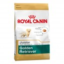 ROYAL CANIN GOLDEN RETRIEVER CACHORRO 12 KG