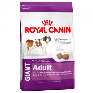 ROYAL CANIN GIANT ADULTO 15 KG